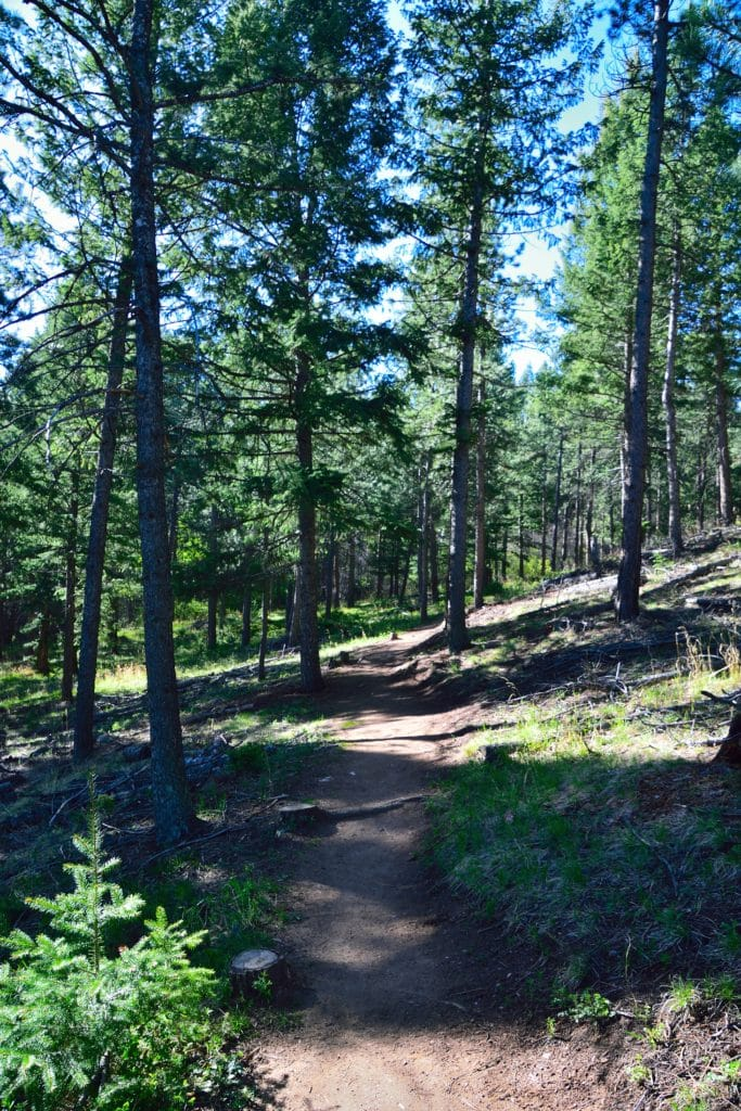 What Does Rt Mean >> Beaver Brook & Chavez Trail Loop - Virtual Sherpa